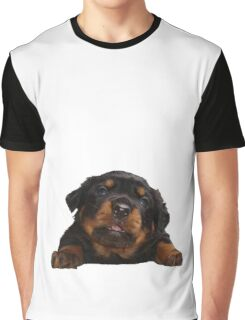 Cute Rottweiler With Tongue Out Isolated Graphic T-Shirt