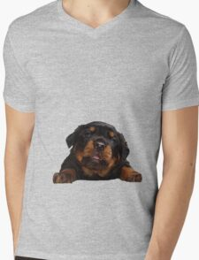 Cute Rottweiler With Tongue Out Isolated Mens V-Neck T-Shirt