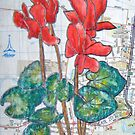 Red Cyclamen on the Street by Alexandra Felgate