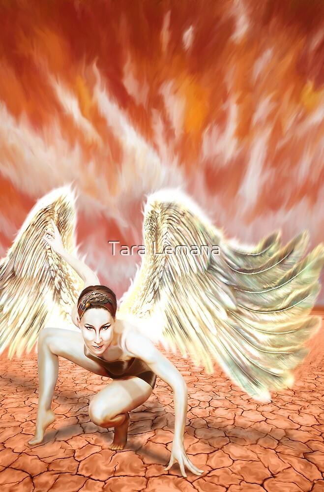 Landed by Tara Lemana