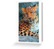 Amur Leopard ~ A Solemn Portrait Greeting Card