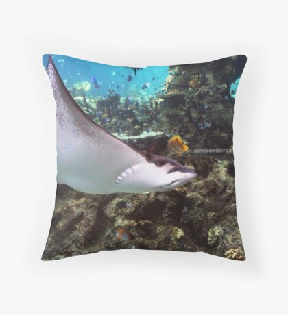 Manta Ray Throw Pillow
