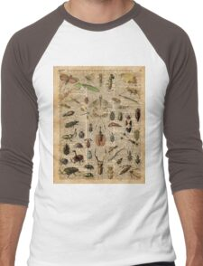 Insects Bugs Flies Vintage Illustration Dictionary Art Men's Baseball ¾ T-Shirt