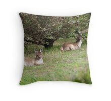 'JUST LAZIN AROUND', Floe & Jodi,  Throw Pillow