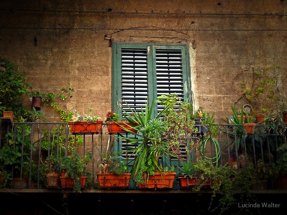 The Balcony Garden by Lucinda Walter