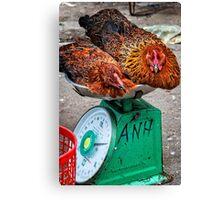 Chicken scales Canvas Print