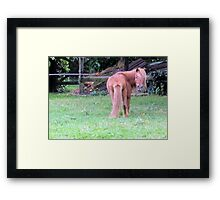 whos looking at who Framed Print