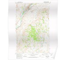USGS Topo Map Washington State WA Okanogan 242919 1980 24000 Poster