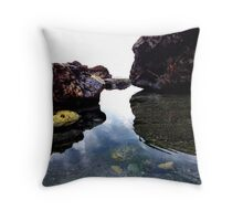 Rock Pool Throw Pillow