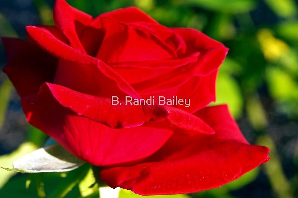 Un-ashamed red by ♥⊱ B. Randi Bailey