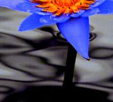 Blue Petal Sticker