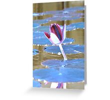 Neon Water Lily Greeting Card