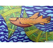 363 - SHARK DESIGN - DAVE EDWARDS - COLOURED PENCILS - 2012 Photographic Print
