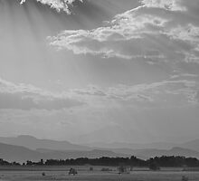 In Gods Country BW by Bo Insogna