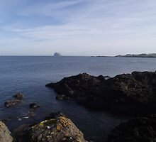 Bass Rock by pantherart