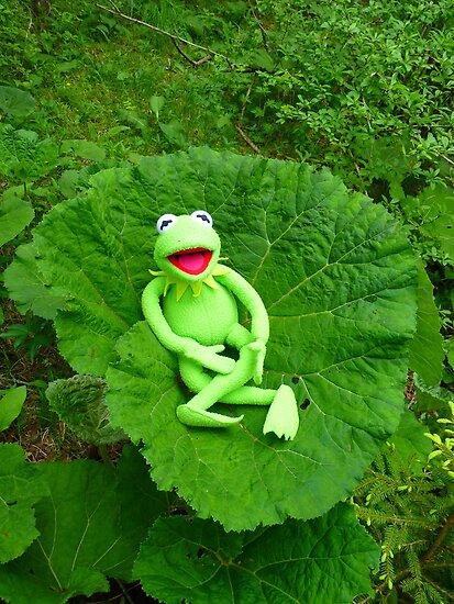Butterbur Journal Large Nature Frog Kermit by HQPhotos