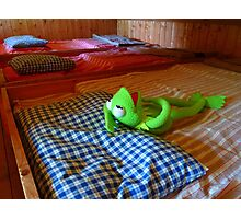 Frog Kermit Tired Sleep Bed Photographic Print