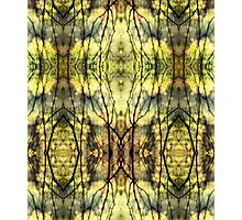 Abstract Yellow Trees Photographic Print