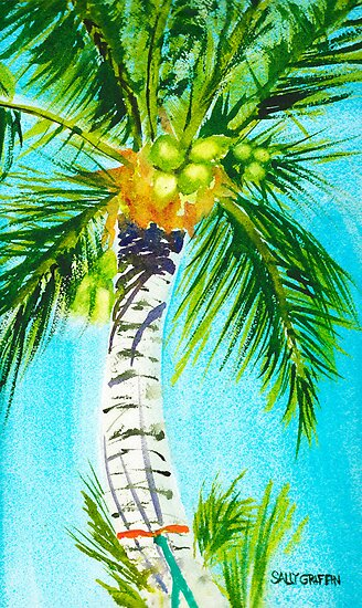 Where the Hammock Sways by Sally Griffin