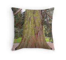 Giant Redwood Sequoiadendron Giganteum Tree Throw Pillow