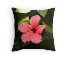 Hibiscus Flower Chinese Rose Eibisch Red Plant Throw Pillow