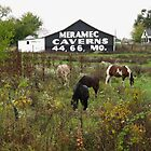 Route 66 - Horses and Barn by Frank Romeo