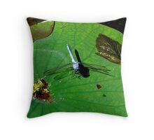 Blue Dragon Fly Throw Pillow