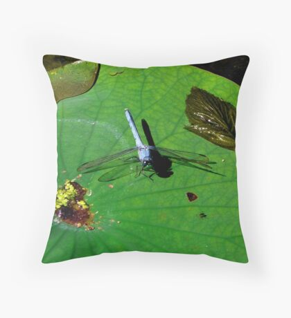 Blue Dragon Fly Throw Pillow