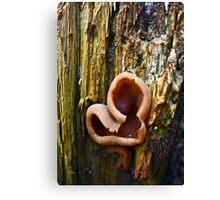 Fungi Love Canvas Print