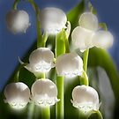 Lily of the Valley by JonnisArt