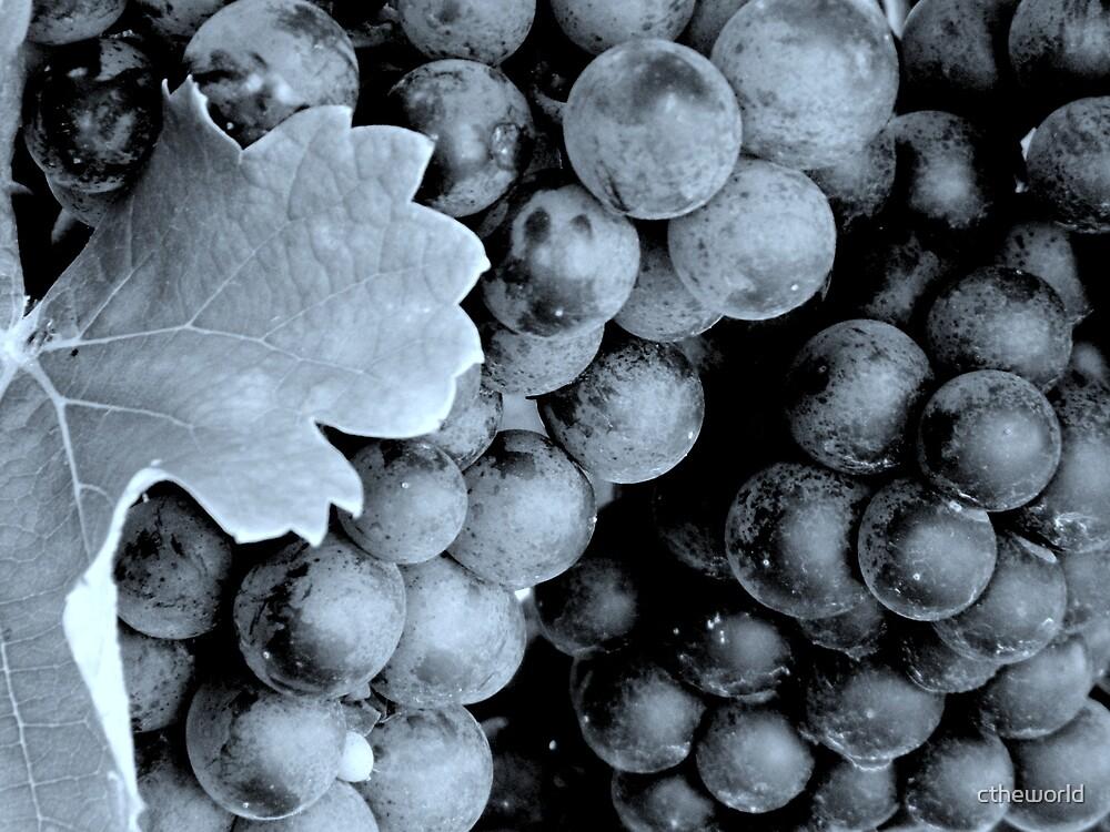 Grapes - B&W (cyan)^ by ctheworld