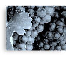 Grapes - B&W (cyan)^ Canvas Print