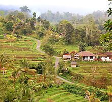 Village in Bali - Pl. enlarge by Charuhas  Images