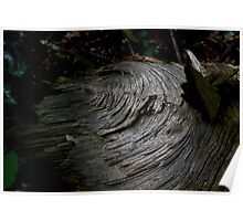 Wild boar wood creature Poster