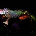 Rainbow Iguana by Davgoss