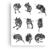 The Dark Wood 'Mouse Sketches' Design Canvas Print