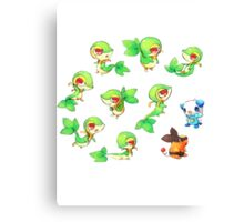Snivy Gang Canvas Print