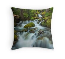 Comin' at Ya! Throw Pillow