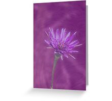 Color Me Purple! (Available in iPhone & iPod cases) Greeting Card