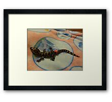 Lilly The Baby Alligator With Bling Framed Print