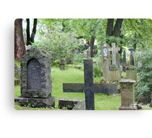 Cemetery in Trondheim outside of the Nidaros Cathedral Metal Print