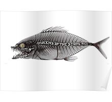 qotsa fish Poster