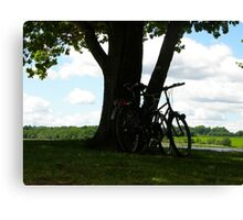 Resting under the tree Canvas Print