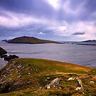Blasket Island View by Michael Walsh
