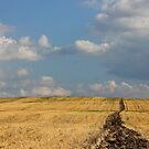 Rural Landscape in the Country by kirilart