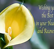 Wishing you Best - Healing and Recovery by Sherry Hallemeier