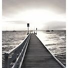 Jetty by Lois Romer