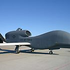 UAV Global Hawk by mooneyes