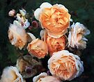 Copperblush by RC deWinter