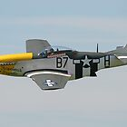 P51 Mustang by mooneyes